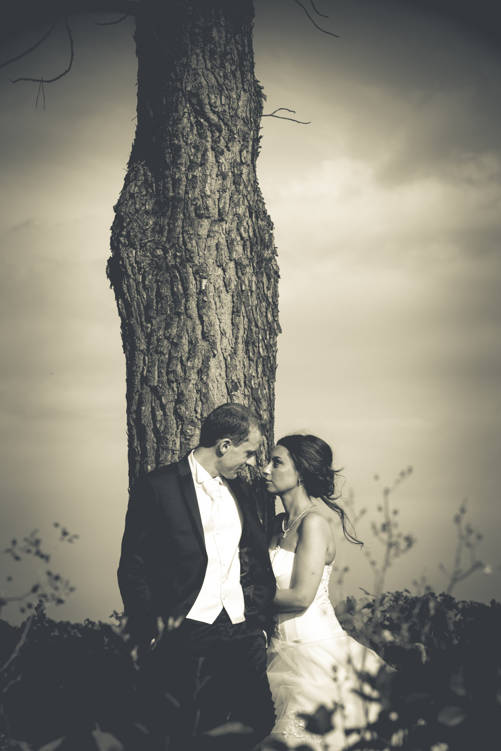 Photographie Video Mariage Toulouse Aveyron Video