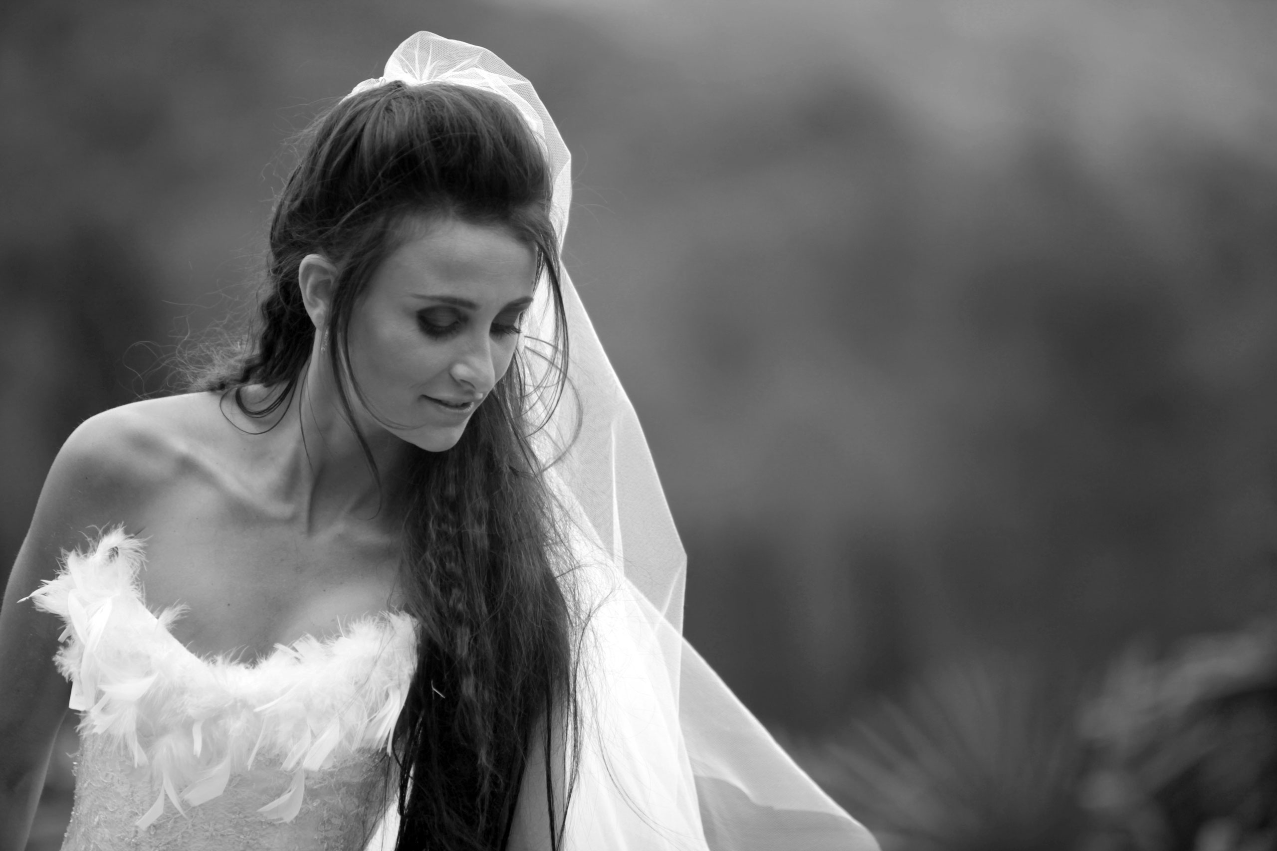 Mariage Photographie Tarn Video Aveyron Toulouse